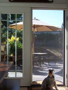 patio door with white mirage retractable screen installed